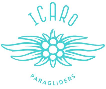 ICARO_Logo2015_blue
