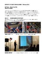 ICARO REPORT 2012.2