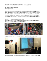 ICARO REPORT 2012.2Pdf