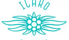ICARO 2014 カラー・スペシャルオファー
