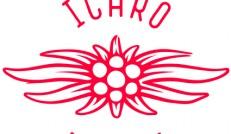 New ICARO 2015 カラー発表