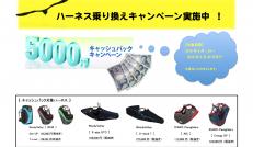 5,000円 キャッシュバック!