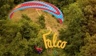 FALCO(ファルコ)