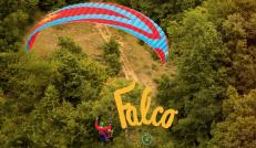 FALCO(ファルコ)登場!